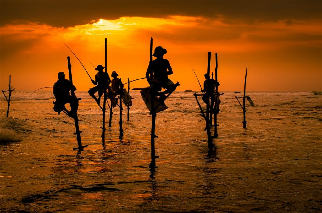 Fishing Men on Stilts in Galle