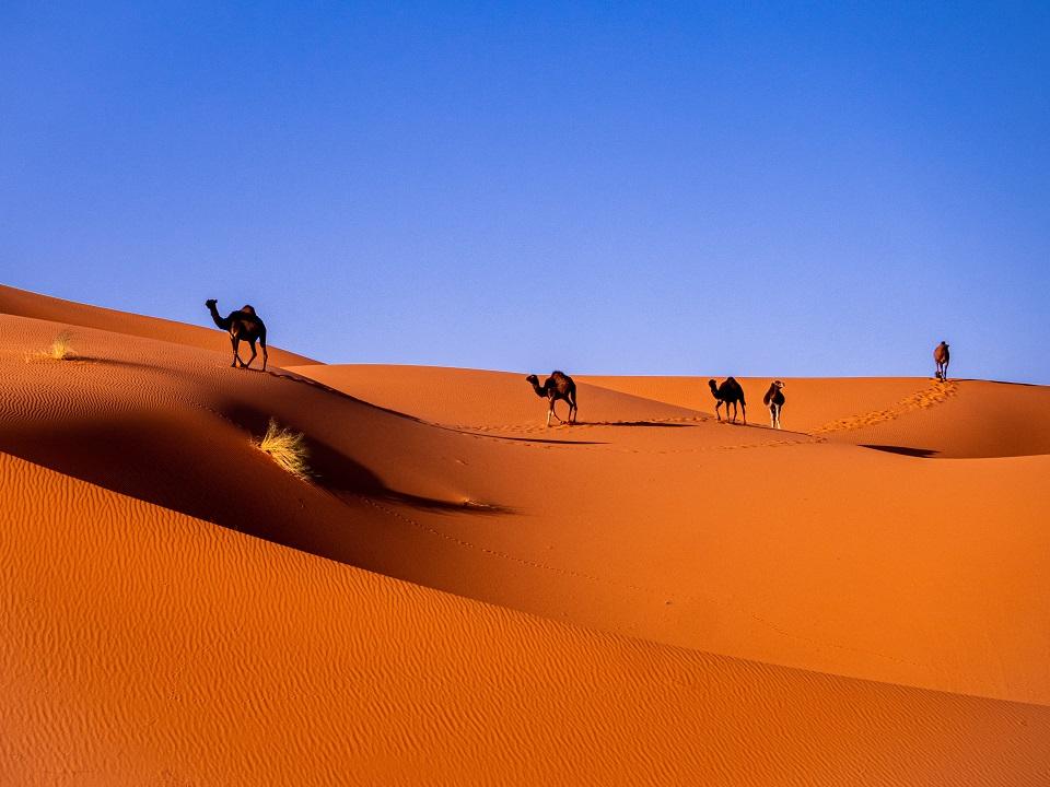 Merzouga in the Moroccan desert